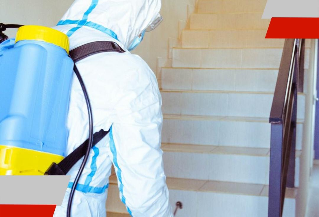 El Gobierno continúa realizando desinfecciones en edificios de RíoGrande